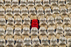solitudine-individualismo